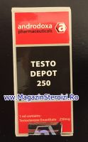 Testo Depot 250